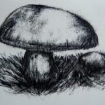 Mushroom03_210x297mm